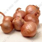 onions-shallots-red-sun-shallot